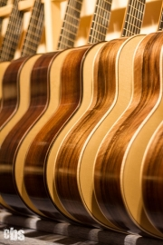 Exposición de guitarras